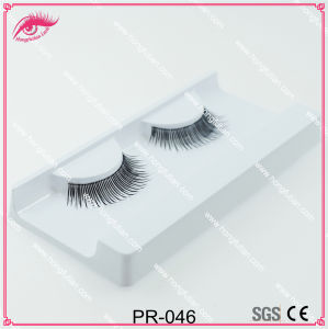 Hot Sale Beauty Fashion Human Hair Eyelashes pictures & photos