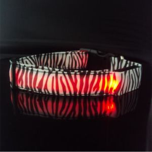 Zebra LED Dog Collar pictures & photos