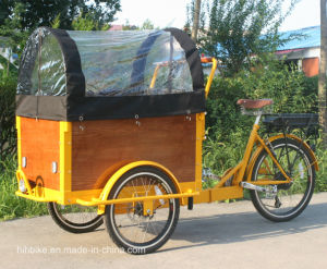 Good Shape Folding Hot Sale Electric Cargo Tricycle for Adult pictures & photos