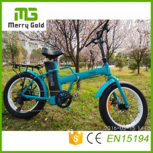 Front&Rear Tektro Disc Brake Ebike 36V 250W Folding Electric Bike pictures & photos