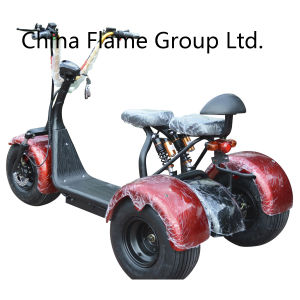3 Wheel Motor Scooter with 1000W 60V/20ah pictures & photos