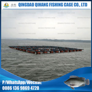 Floating Abalone Farms Fish Cage pictures & photos