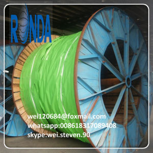 6KV 10KV XLPE Insulated Steel Wire Armored Electric Cable pictures & photos