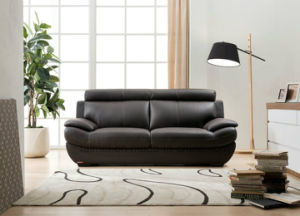 American Modern Genuine Leather Sofa (1+2+3) pictures & photos