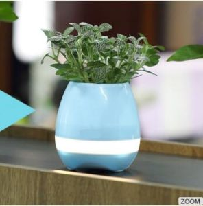 Bluetooth Smart Music Flower Pots Intelligent Real Plant Touch Play Flowerpot pictures & photos