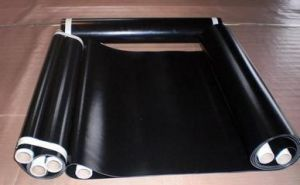 PTFE Fusing Machine Belt Plus Buckle pictures & photos