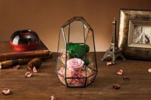 Fashion Natural Real Rose Flower in Glass for Birthday Gift pictures & photos