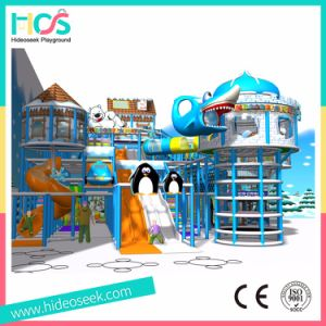 Frozen Snow Theme Naughty Castle Kids Indoor Playground Equipment (HS16401) pictures & photos