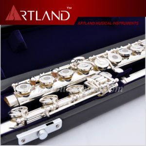 17 Open Holes Silver Plated Imported Cupronickel Professional Flute (AFL7507) pictures & photos