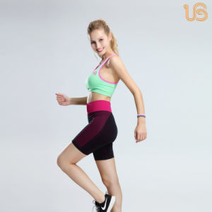 Fashion Seamless Bra and Tights Sets for Sports pictures & photos