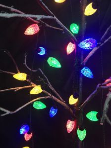 Colourful Christmas Ornament LED Decoration Lights pictures & photos