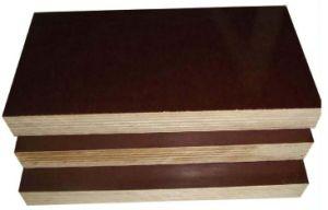 Film Faced Poplar/Birch/Hardwoods Plywood for Construction