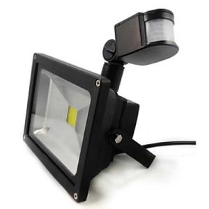 10W 20W 30W 50W Motion Sensor PIR LED Security Flood Lights pictures & photos