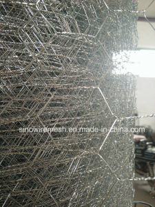 Sailin Hot-Dipped Galvanized Hexagonal Chicken Wire Netting pictures & photos
