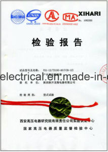 Zn63A (VS1) 12kv Idoor Vacuum Circuit Breaker with ISO9001-2000 pictures & photos