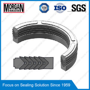 Es Series Hydraulic Cylinder Rod Seal/V Packing Seals/Chevron Seal pictures & photos