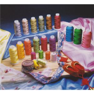40W Multi-Color Rayon Embroidery Thread pictures & photos