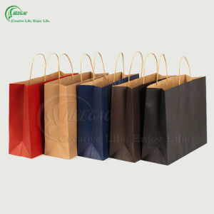 Custom Brown Kraft Paper Bag with Twisted Handle (KG-PB019) pictures & photos