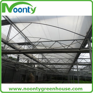 Vertical Saw Tooth Multi-Span Greenhouse pictures & photos