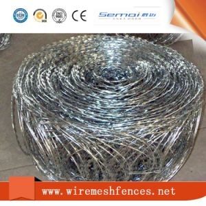 Concertina Razor Barbed Wire in Coil pictures & photos