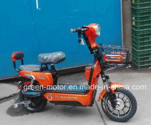 350W Electric Bike, E-Bike, Electric Bicycle (Horse)