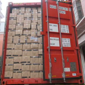 Container Loading Supervision/Container Loading Check for Small Carton pictures & photos