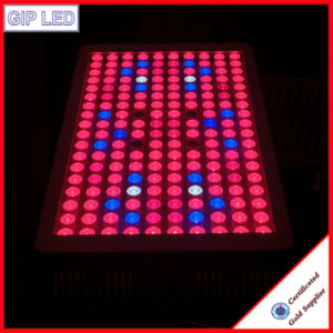 2016 Promotion High Power Greenhouse Hydroponics LED Grow Light 1000W pictures & photos