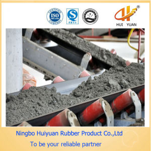 High Quality Endless Conveyor Belt pictures & photos