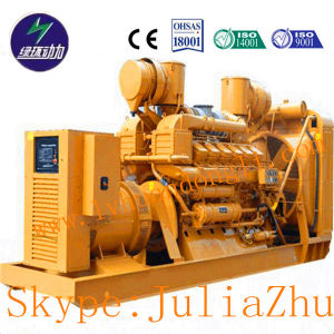 Small-Medium-Large Power Series Biogas Generator Set pictures & photos
