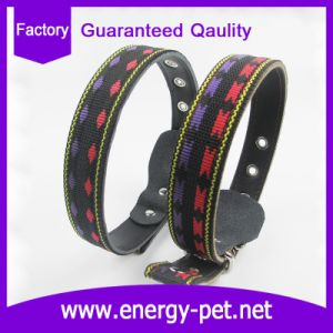 Pet Product of Leather Liner Collar for Big Dogs Wholesales Factory Direcetly