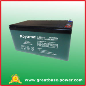 Good Quality Hybrid Electric Vehicles Battery 12V 14ah pictures & photos