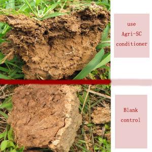 Newsun Agri-Sc Soil Improvement pictures & photos