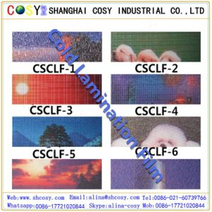 3D Unti-UV/Aging Cold Lamination Film High Quality for Protection pictures & photos