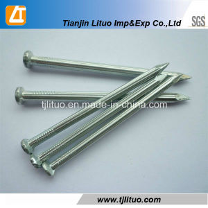 White Galvanized Concrete Nails Fluted pictures & photos