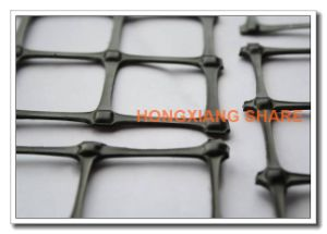 Biaxial Plastic Protect-Support Geogrid Uniaxial Geogrid for Road Base pictures & photos