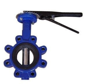 Ductile Rion Body/Ss Disc Lug Butterfly Valve pictures & photos