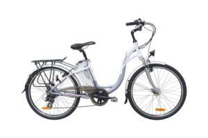 Well- Sold 26 Inch Motor Bike (LN26C05)