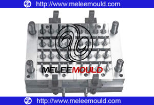 Plastic Pet Preform Mould/Mold (MELEE MOULD -119) pictures & photos