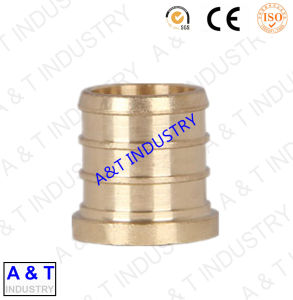 Professional China Factory PPR Pipe Fitting Brass pictures & photos