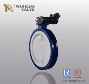Dn750 All PTFE Lining Flange Butterfly Valve with Split Body pictures & photos