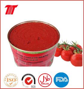 Tomato Paste for Nigeria pictures & photos