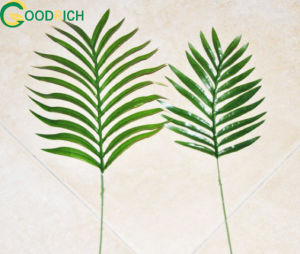 Real Touch Artificial Leaf in Various Models pictures & photos