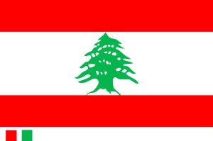 Festival Flag/Advertisement Flag/Decoration Flag/ Sports Flag (0294) pictures & photos