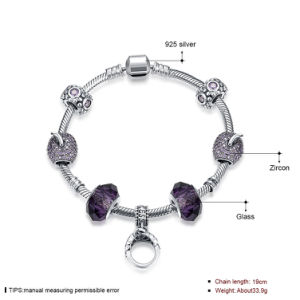 925 Sterling Steel Bracelet with a Ring Inset Pole Chain Glass Beads Beautiful Jewelry pictures & photos