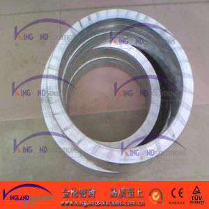 (KLG403) Spiral Wound Gasket with Outer Ring pictures & photos