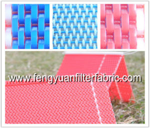 Plain Weave Flat Yarn Fabric Conveyor Belt Mesh pictures & photos