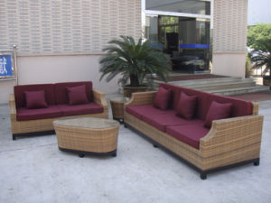 Factory Price/1 Set Accepted/Rattan Sofa/Wicker Sofa pictures & photos