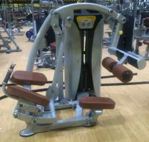 Best Quality Hoist Gym Equipment Weight Plate Tree (SR1-36) pictures & photos