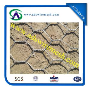 Direct Factory Hot Sale Hexagonal Wire Mesh pictures & photos