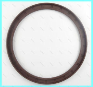 Rotary Shaft Oil Seal for Sale pictures & photos